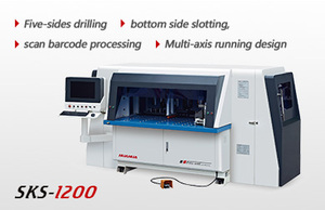 Automatic 5 sides CNC drilling machine SKS-1200